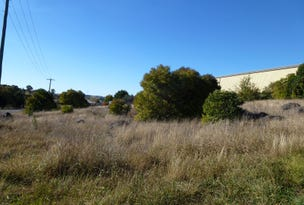 Lot 11&12 Wellington St, Molong, NSW 2866