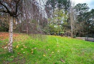 33 Bird Road, Avonsleigh, Vic 3782
