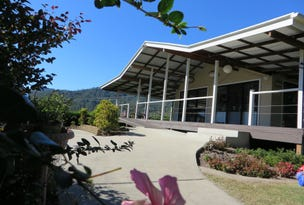 Lot 101 Gradys Ck Rd St, Gradys Creek, NSW 2474