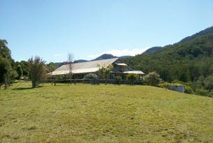 758 Summervilles Road Thora, Bellingen, NSW 2454