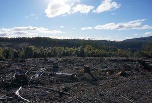 Lot 2  Gads Hill Road, Mole Creek, Tas 7304