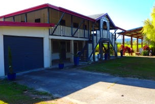 201 Long Pocket Road, Long Pocket, Qld 4850