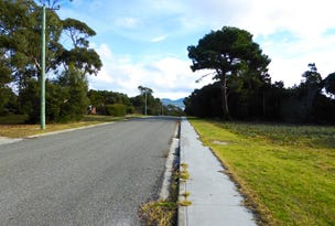17 Barr Street, Lady Barron, Tas 7255