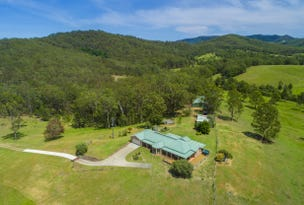 600 Pipeclay Rd, Pipeclay, NSW 2446