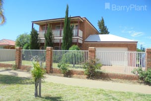 9 Mary Court, Robinvale, Vic 3549