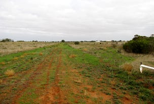 Lot 102 Badcoe Road, Loxton, SA 5333