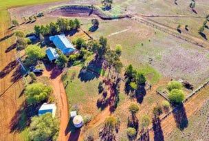 621 Barellan Road, Narrandera, NSW 2700