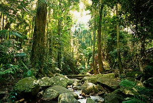 Mount Warning, address available on request