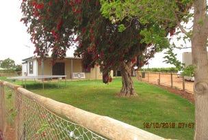 72 Coates Road, Barmera, SA 5345