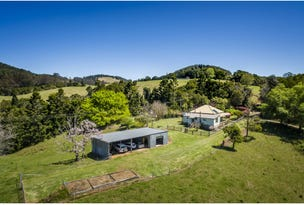 1691 Coramba Road, Dorrigo, NSW 2453