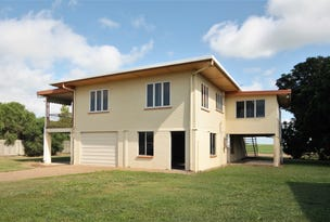 173 Anabranch Road, Jarvisfield, Qld 4807