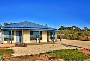 81 Wheatley Road, Loxton, SA 5333