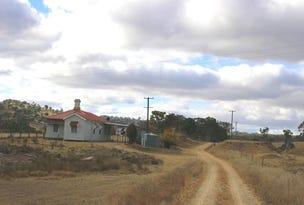 99 A M White Drive, Tenterfield, NSW 2372