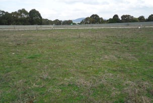 Lot 102 Manor Hills off Surry Street, Collector, NSW 2581