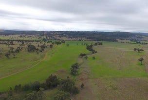 """2624 Ridgelands Rd, """"Shannandore"""", Scone, NSW 2337"""