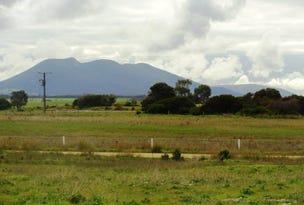 Allotment 11 Flinders Highway, Wangary, SA 5607