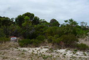 Lot 41 McCarthy Road, Bandy Creek, WA 6450