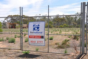 Section 423 Curtis Road, Waikerie, SA 5330