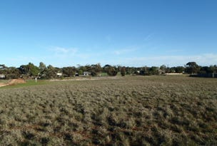 L12 Cattle Track, Crystal Brook, SA 5523