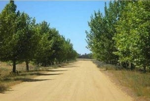 LOT 20 Conargo Road/Mulumbah Estate, Deniliquin, NSW 2710