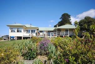 591 Shepards Road, Dorrigo, NSW 2453