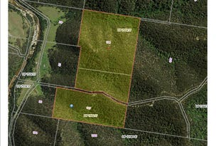 Lots 106 & 107 Wollombi Rd, Paynes Crossing, NSW 2325