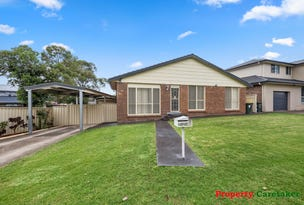 9 Guernsey Ave, Minto, NSW 2566
