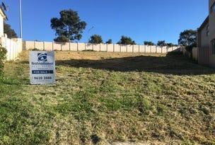 40 Treloar  Place, Edensor Park, NSW 2176