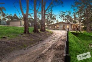 45 Patman Drive, Nyora, Vic 3987