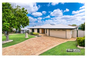 19 Reddy Drive, Norman Gardens, Qld 4701