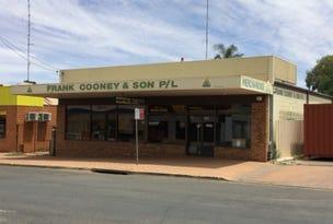 36 William St, Condobolin, NSW 2877