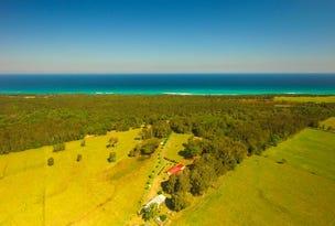 189 Sandridge Road, Mitchells Island, NSW 2430