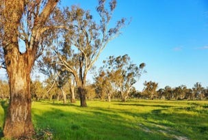 Lot 10 Sturt Highway, Narrandera, NSW 2700