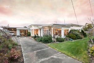 167 Preolenna Road, Flowerdale, Tas 7325