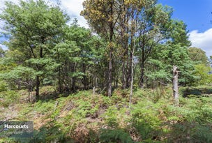 RA Fyfes Road, Mountain River, Tas 7109