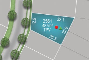 Lot 2561, Springfield Rise, Spring Mountain, Qld 4300