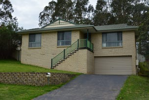 41 Robinson Way, Singleton, NSW 2330