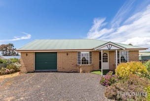 579 Preston Road, North Motton, Tas 7315