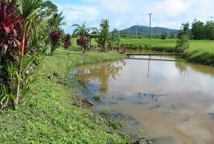 68 Meuanbah Road, Bombeeta, Qld 4871