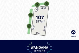 107 Drewan Drive, Wandana Heights, Vic 3216