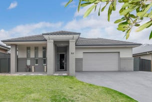 55 John Darling Drive, Belmont, NSW 2280