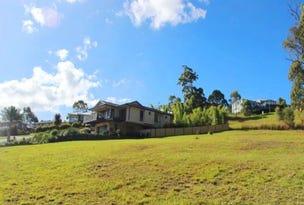 19 Hilltop Parkway, Tallwoods Village, NSW 2430