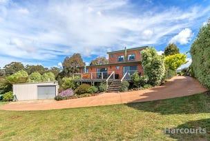 46 Old Surrey Road, Havenview, Tas 7320