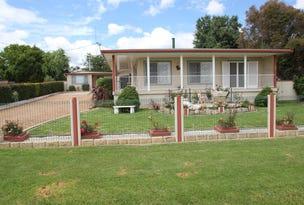 223  Douglas Street, Tenterfield, NSW 2372