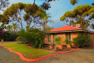 3 Trythall Place, Hannans, WA 6430