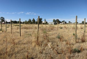 3 River Road, Coomealla, NSW 2717