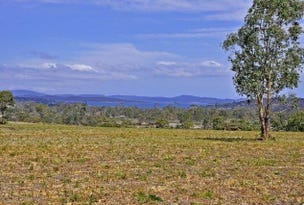Lot 1 Waterson Lane, Carlton, Tas 7173