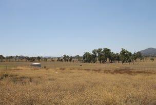 47 Robert Hoddle Grove, Mudgee, NSW 2850