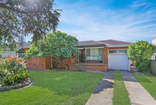 16 Pelerin Avenue, Singleton, NSW 2330