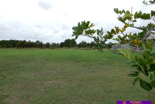 9 Boambillee Circuit, Cooloola Cove, Qld 4580